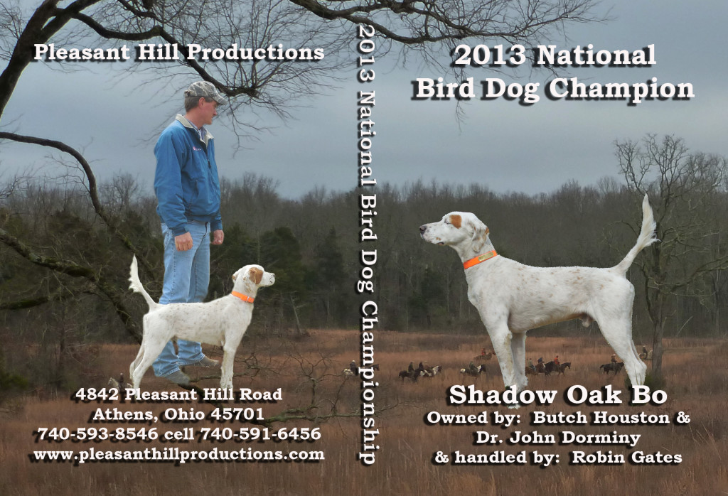 2013 DVD jacket cover